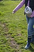 Frau sät Lücken im Rasen nach