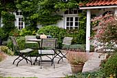 Haus bewachsen mit Wisteria (Blauregen), Terrassenbeet mit Buxus (Buchs - Kugeln), Kästen mit Pelargonium (Geranien) am Fenster, Sitzgruppe auf gepflasterter Terrasse mit Kürbissen (Cucurbita) auf dem Tisch