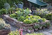 Hochbeet aus alten Ziegelsteinen mit Gemüse bepflanzt