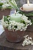 Kerzenkranz aus Blüten von Sambucus nigra (Holunder) um grüne Kerze