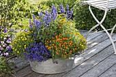 Zink - Wanne mit Tagetes tenuifolia (Studentenblumen), Salvia farinacea
