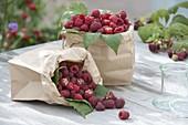 Himbeeren (Rubus idaeus) in Papiertueten