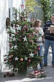 Weihnachtsbaum in Ständer stellen und schmücken