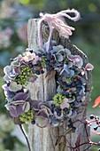 Kleiner Kranz aus Hydrangea (Hortensien), Knospen und Blüten von Hedera