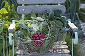 Drahtkorb mit frisch geerntetem Gemüse