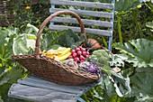 Weidenkorb mit frisch geerntetem Gemüse