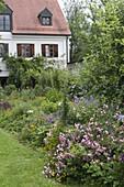 Buntes Sommerbeet mit Rosa (Rosen) Stauden und Sommerblumen