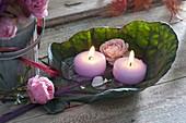 Kohlblatt als Kerzenhalter : Blatt von Rotkohl (Brassica) mit Blüten