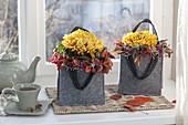 Einzelne Blüten von Chrysanthemum (Deko - Chrysanthemen)