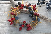 Wildfrüchte - Kränzchen mit Hagebutten (Rosa), Schlehen (Prunus spinosa)