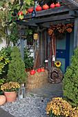 Hauseingang herbstlich dekoriert : Picea glauca 'Conica' (Zuckerhutfichten), Chrysanthemum (Herbstchrysanthemen), Hokkaido - Kürbisse (Cucurbita), Strohballen, Kranz aus Zweigen, Kies, Laterne