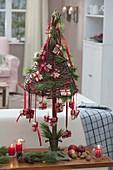 Mini-Bäumchen aus Weide als Adventskalender , dekoriert mit Pinus (Kiefer)
