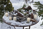 Winterlicher Terrassentisch mit Zapfen und Zweigen von Pinus (Kiefer)