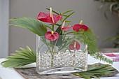 Modernes Gesteck mit Anthurium (Flamingoblumen), Palmenblatt