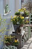 Weiß - gelbe Frühling - Terrasse