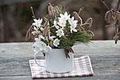 Winterlicher Duftstrauss mit Narcissus 'Ziva' syn. 'Paperwhite'