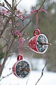 Vogelfutter in verschiedenen Gefaessen zum aufhängen