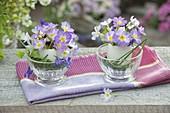 Kleine Straeusse in Eierschalen als Vase : Primula (Kissenprimel), Viola