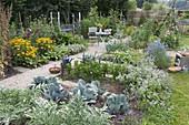 Gemüsegarten mit Rudbeckia 'Goldsturm' (Sonnenhut), Artischocken