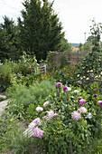 Bauerngarten mit Gemüse, Blumen und Kräutern
