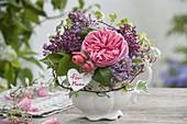 Kleines Gesteck in Sahnekännchen : Rose 'Chippendale' (Nostalgierose)