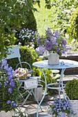 Kleine Terrasse mit blauem Tisch und Stuhl, Strauss aus Syringa (Flieder)