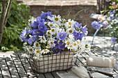 Kleine blau-weisse Straeusse aus Campanula persicifolia (Glockenblumen)