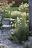 Kleine Terrasse mit weißem Beet
