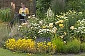 Weiss-gelbes Beet mit Rosen und Stauden