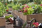 Bauerngarten in selbstgebauten Hochbeeten aus Brettern