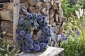 Kranz aus Blüten von Echinops ritro (Kugeldistel) an Brennholz-Stapel