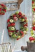 Kranz aus Äpfeln (Malus), Sorbus (Vogelbeeren , Ebereschen), Rosa