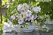 Strauss aus Blüten von Holunder (Sambucus nigra), Kamille