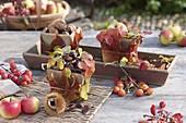 Herbstliche Tischdeko mit Maronen, Esskastanien (Castanea sativa), Äpfeln