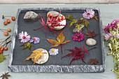 Flache Schale mit Kieselsteinen, Blüten und Blättern im
