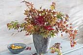 Herbstlicher Strauss aus Zweigen von japanischem Ahorn