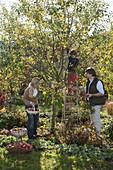 Familie bei der Apfelernte