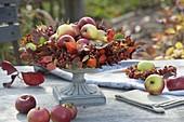 Schale mit Kranz aus Rosa (Hagebutten), Blättern von Erdbeere (Fragaria)