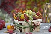 Herbstlicher Obstkorb mit Weintrauben (Vitis vinifera), Quitten (Cydonia)