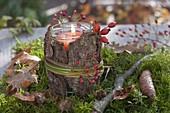 Wald-Windlicht aus Einmachglas mit Rinde verkleidet