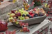 Obstschale aus Holz gefüllt mit Weintrauben (Vitis vinifera), Zwetschgen