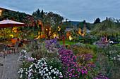 Beet mit Herbstastern und beleuchtete Abendterrasse