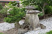 Japanischer Garten mit Scheinzypresse und Steinpilzen