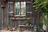 Wand-Element vom alten Gartenhaus als Sichtschutz an der Terrasse