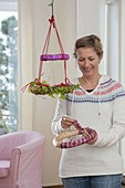 Kränze als hängender Weihnachtsbaum und Adventskalender