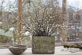 Rustikale Vase mit bluehenden Zweigen von Prunus (Kirsche), Holzschale