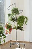 Fahrbarer Garderobenständer als Halterung für Blumenampeln
