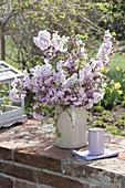 Üppiger Strauss mit Blüten von Prunus subhirtella und sargentii
