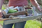 Frau hält Zink-Kasten mit Zubehör für die Aussaat im Gemüsegarten