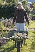 Frau räumt Gemüsegarten im Herbst ab